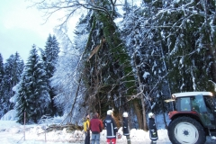 Einsatz 15.12.2017 - Baum Lässer (6)