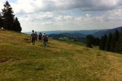 Leistungsbewerbe Lingenau 16.07.2016 (3)