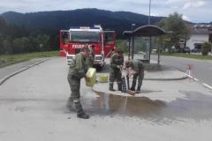 Einsatz 10.06.2017 - Ölspur Fahl KF (2)