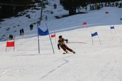 Vereinsschirennen 30.01.2016 (1)-klein