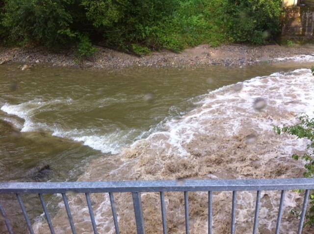 Einsatz 24.07.2014 - Hochwasser RG (8)